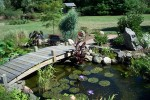 pond-on-the-middle-of-the-garden-in-concept-of-a-Beautiful-Gardens-from-around-the-world[1]