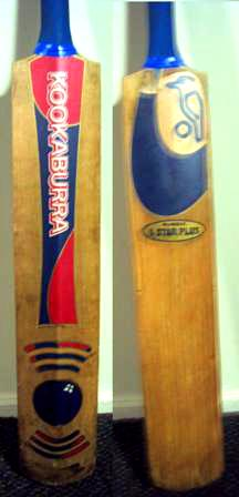 Caring For Your Cricket Bat