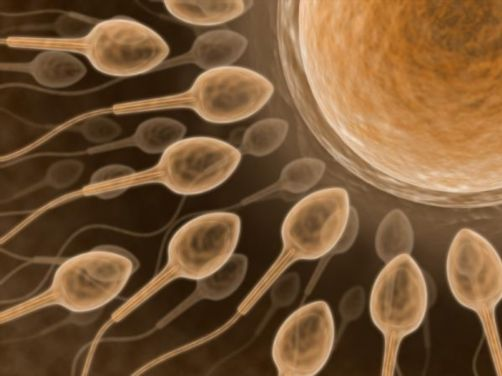 Treating Fertility Problems in Men