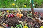 How To Make Compost Properly