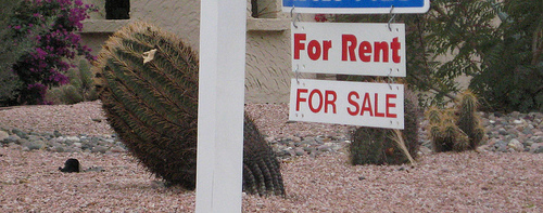 The Horrors Of Renting or The Terrors Of Selling - Which Do You Prefer?