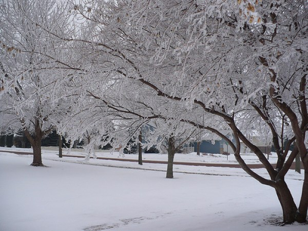 Must-Have Supplies For Contractors In The Winter
