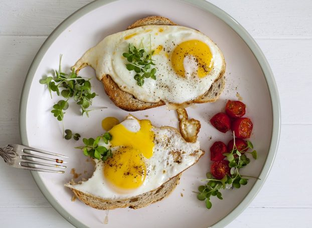Lose Weight With High Quality Eggs Naturally!