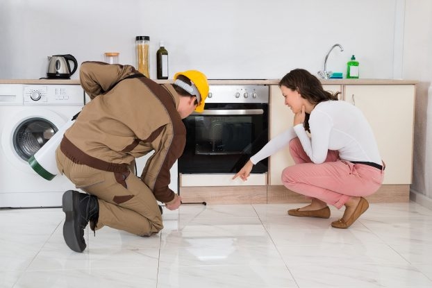 Why Should You Hire Reliable Pest Control Service Slough