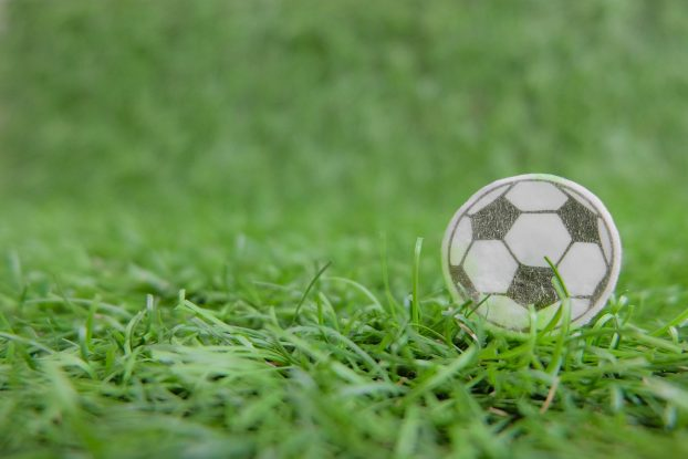 Remarkable And Excellent Quality Artificial Grass In Suffolk